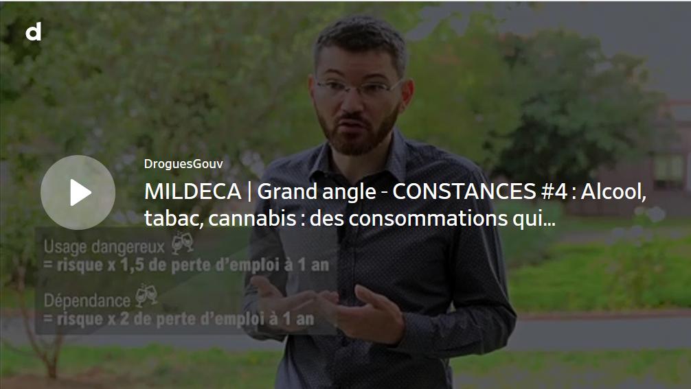 MILDECA | Grand angle - CONSTANCES #4 : Alcool, tabac, cannabis : des consommations qui augmentent le risque de perte d'emploi