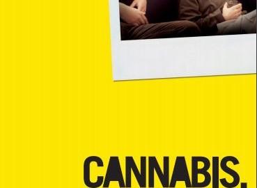 Cannabis, ce qu'il faut savoir
