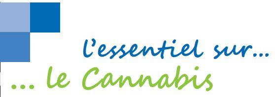 Addiction Cannabis - CANNABIS / Tout savoir sur ce produit et ses risques