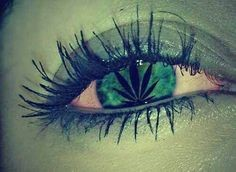 Addiction Cannabis - CANNABIS / Cannabis : attention les yeux !