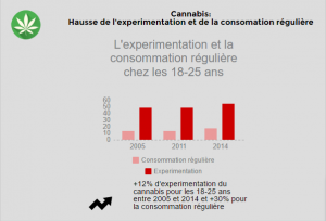 infographie-cannabis