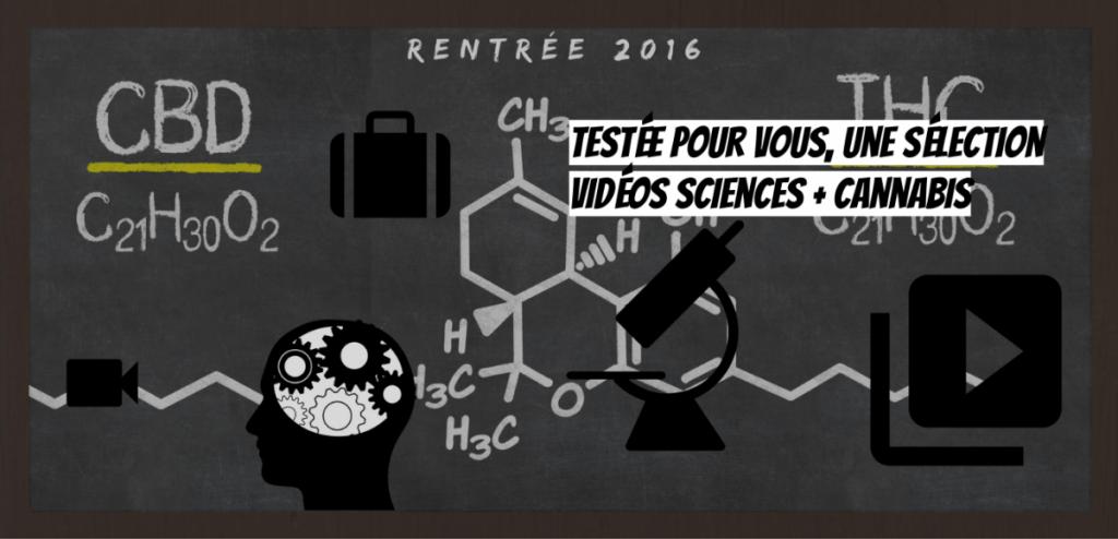 Addiction Cannabis - CANNABIS / Les vidéos scientifiques de la rentrée 2016 sur le cannabis