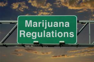 Addiction Cannabis - CANNABIS / Le débat sur la régulation du cannabis s'invite dans la primaire, en attendant le colloque du Havre