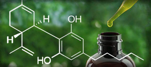 L'ambivalence du cannabidiol, produit récréatif ou thérapeutique ?