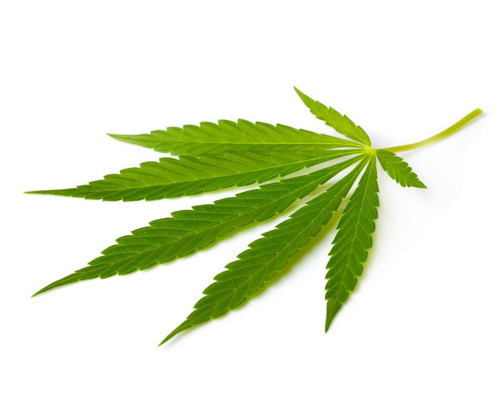 Addiction Cannabis - 22 janvier 2018 - Contraventionnalisation du cannabis : un rapport dépassé – L'ANPAA appelle le gouvernement à revoir sa copie
