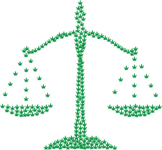 Addiction Cannabis - Dossier : On fait le point sur le rapport parlementaire sur le cannabis