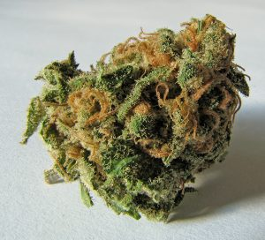 Cannabis : réduire les risques liés à l'usage