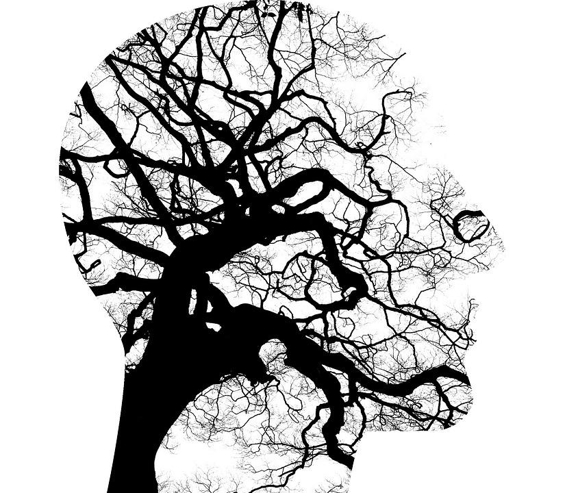 Addiction Alcool - ALCOOL / De quoi meurent les personnes souffrant de troubles mentaux