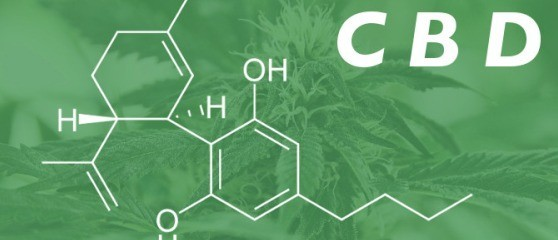 Addiction Cannabis - Le cannabidiol efficace pour traiter la schizophrénie
