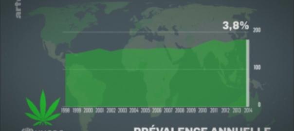 Le Dessous des cartes Cannabis : un marché mondial