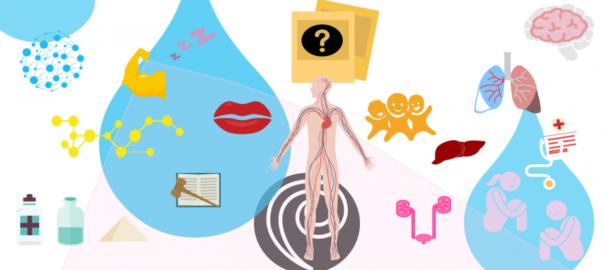 Infographie : Que devient le GHB dans l'organisme