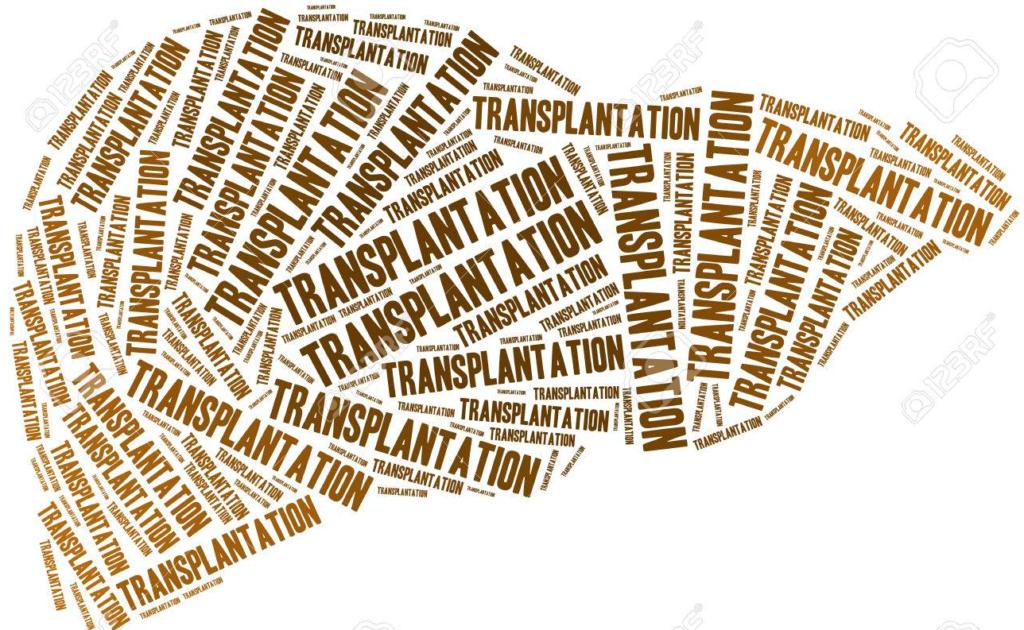 Addiction Alcool - Vers une évaluation  addictologique standardisée pré-transplantation hépatique