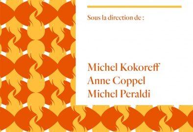 Essai / La catastrophe invisible  Collectif, sous la direction de  Michel Kokoreff, Anne Coppel, et Michel Peraldi