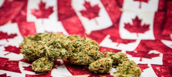 Approche proposée en matière de la réglementation du cannabis : résumé d'une consultation publique au Canada