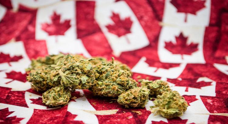 Addiction Cannabis - La dépendance à l'alcool éclipsée par le débat sur la légalisation du cannabis (radio-canada)
