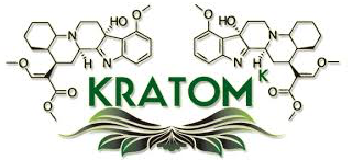 Addiction Autres drogues - Potentiel d'abus du Kratom et implications en terme de régulation
