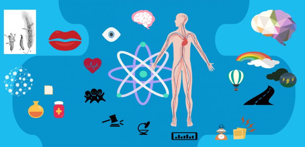 Addiction Autres drogues - DROGUES / Que devient le LSD dans l'organisme