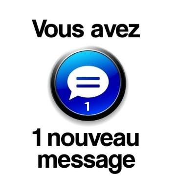 Addiction Alcool - « Vous avez un message ! » : Acceptabilité d'une intervention par envoi de message dans la prévention de la rechute de l'usage d'opiacés