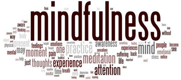 Impact d'une intervention parentale de type mindfulness sur la qualité de la relation parent/enfant chez les usagers d'opiacés