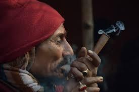 Le cannabis se répand chez les personnes âgées