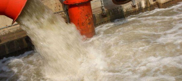 Analyse des drogues dans les eaux usées : overdose chez les Canards WC