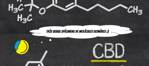 Cannabidiol, une molécule qui fait parler d'elle