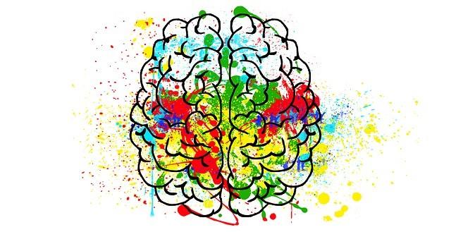 Addiction  - Déficit cognitif chez les usagers de méthamphétamine : cause ou conséquence ? Une étude originale parue dans Neuropsychopharmacology