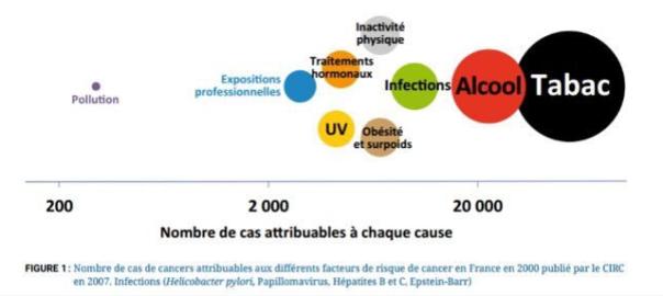 INTERVIEW / Cancer: «l'environnement joue un rôle très faible comparé au tabac et à l'alcool» (Le Figaro)