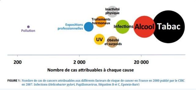 Addiction Alcool - INTERVIEW / Cancer: «l'environnement joue un rôle très faible comparé au tabac et à l'alcool» (Le Figaro)