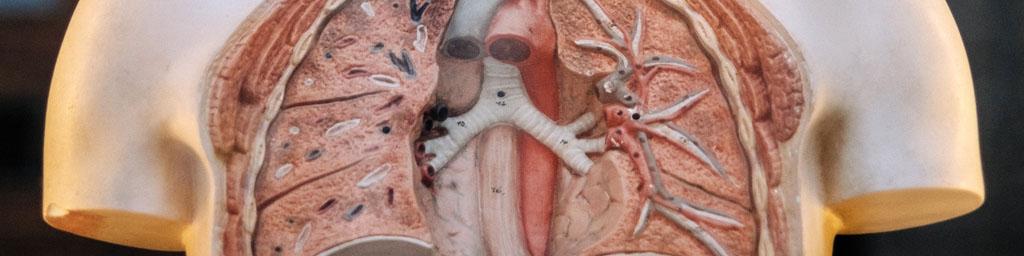 tabac-complications-maladies-pulmonaires