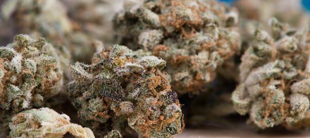 Consommer du cannabis à l'adolescence augmenterait le risque de dépression
