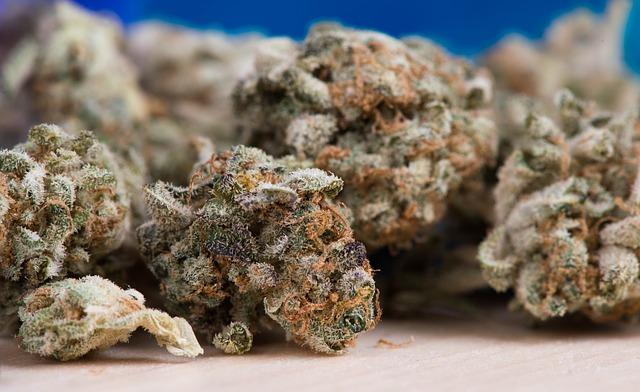 Addiction Cannabis - Consommer du cannabis à l'adolescence augmenterait le risque de dépression