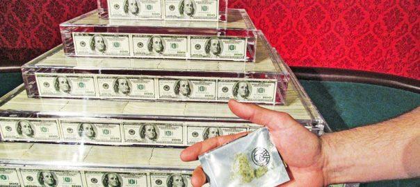 Cannabis en 2019 : dangereux, thérapeutique et profitable