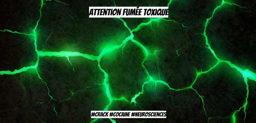 Addiction Autres drogues - La toxicité spécifiques du crack, un article du Maad-Digital