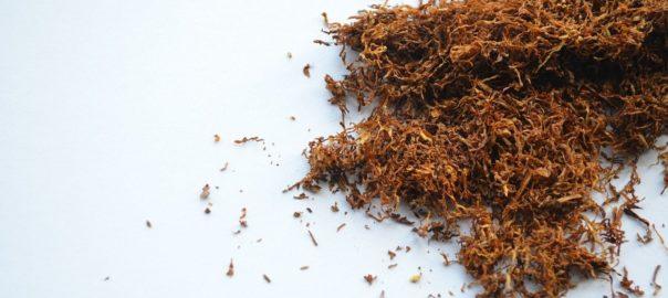 Inde – Accessibilité au tabac et aux cigarettes sans fumée : la situation s'est aggravée depuis le nouveau système de taxation sur les biens et les services.