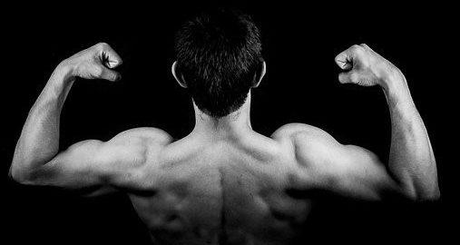 Quand se muscler devient une drogue - Focus sur la dysmorphie musculaire ou anorexie inversée