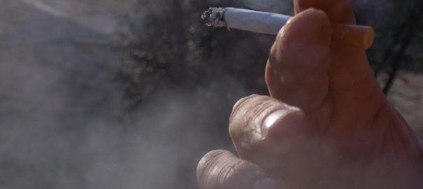 Le tabagisme du père dans la période pré-conceptionnelle associé à un risque de fausse couche